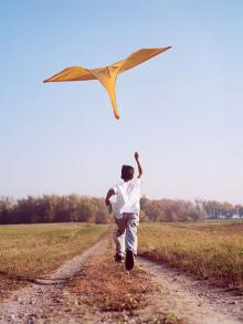 Whether at the beach on in your own backyard, flying a kite will be sure to make you smile.