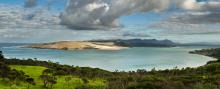 Looking north across Hokianga.