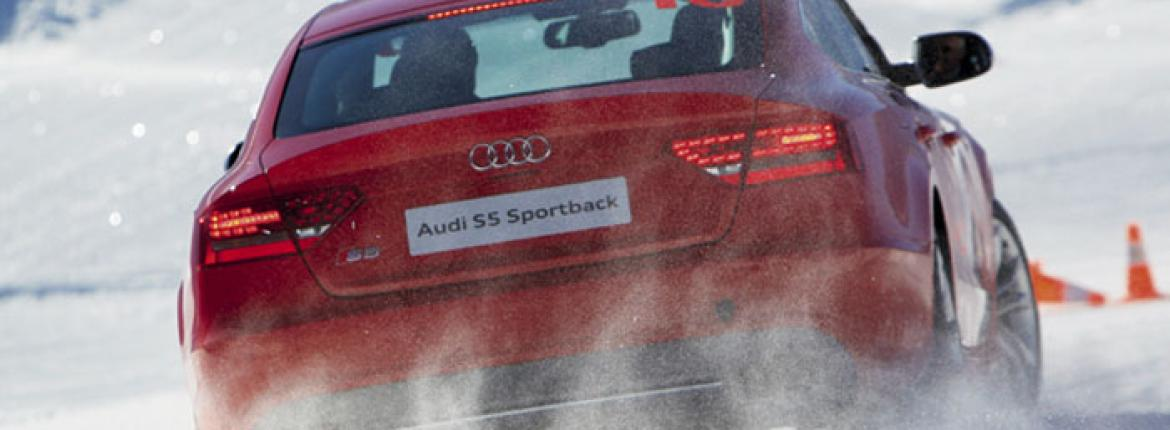 Audi-skid-light.jpg