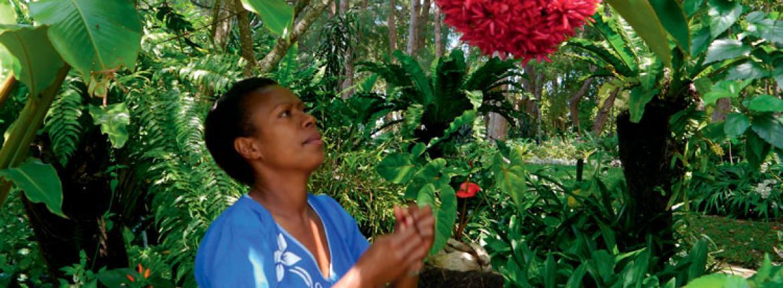 Vanuatu for One | AA New Zealand