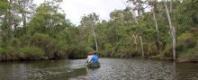 Canoeing along the Margaret River is soothing.