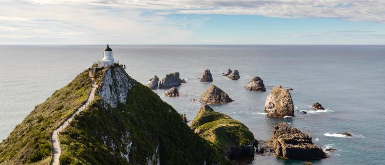 Nugget Point aerial