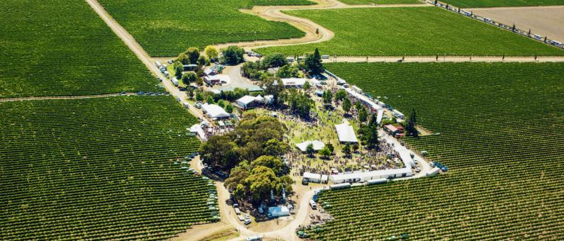 Marlborough Wine Festival aerial