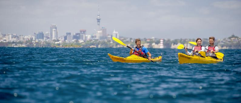Auckland Kayaking